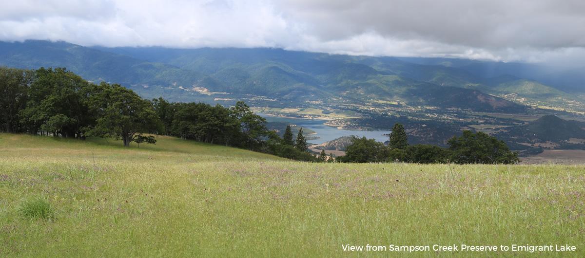 The Sampson Creek Preserve
