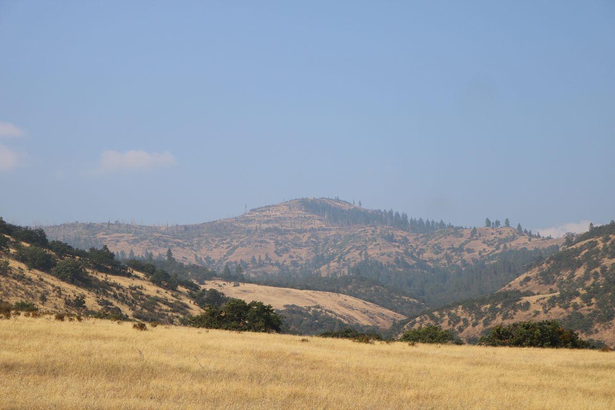A Smokey View of Grizzly Peak near Gaerky Creek