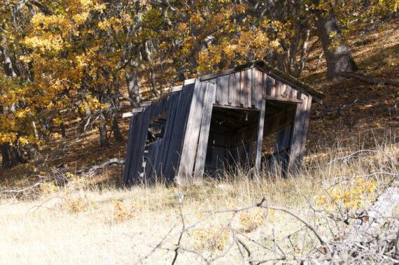 Barron Mine Cabin