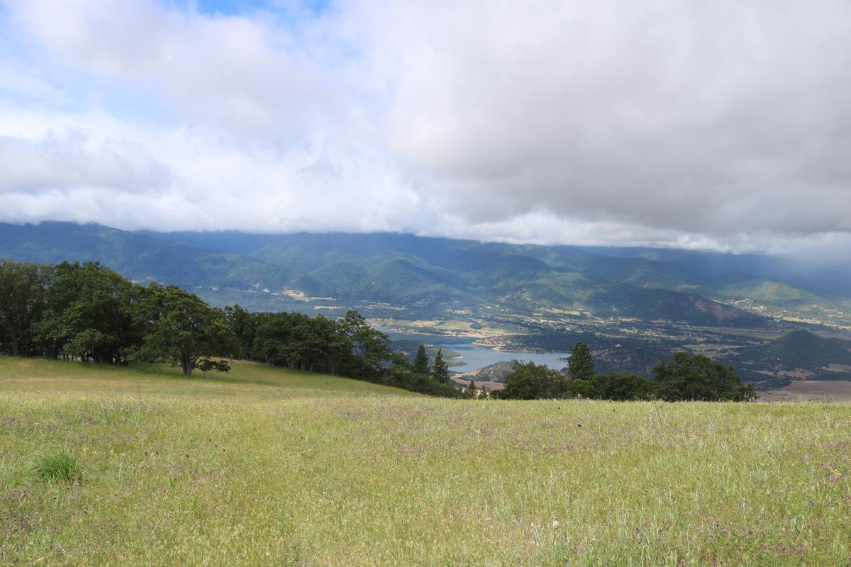 Emigrant Lake View