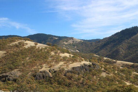 Oak Woodlands and cliffs