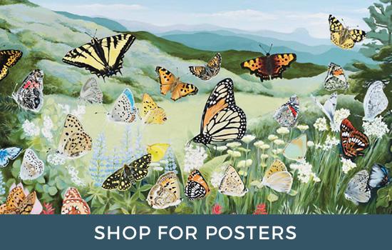 Posters by Deb Van Poolen